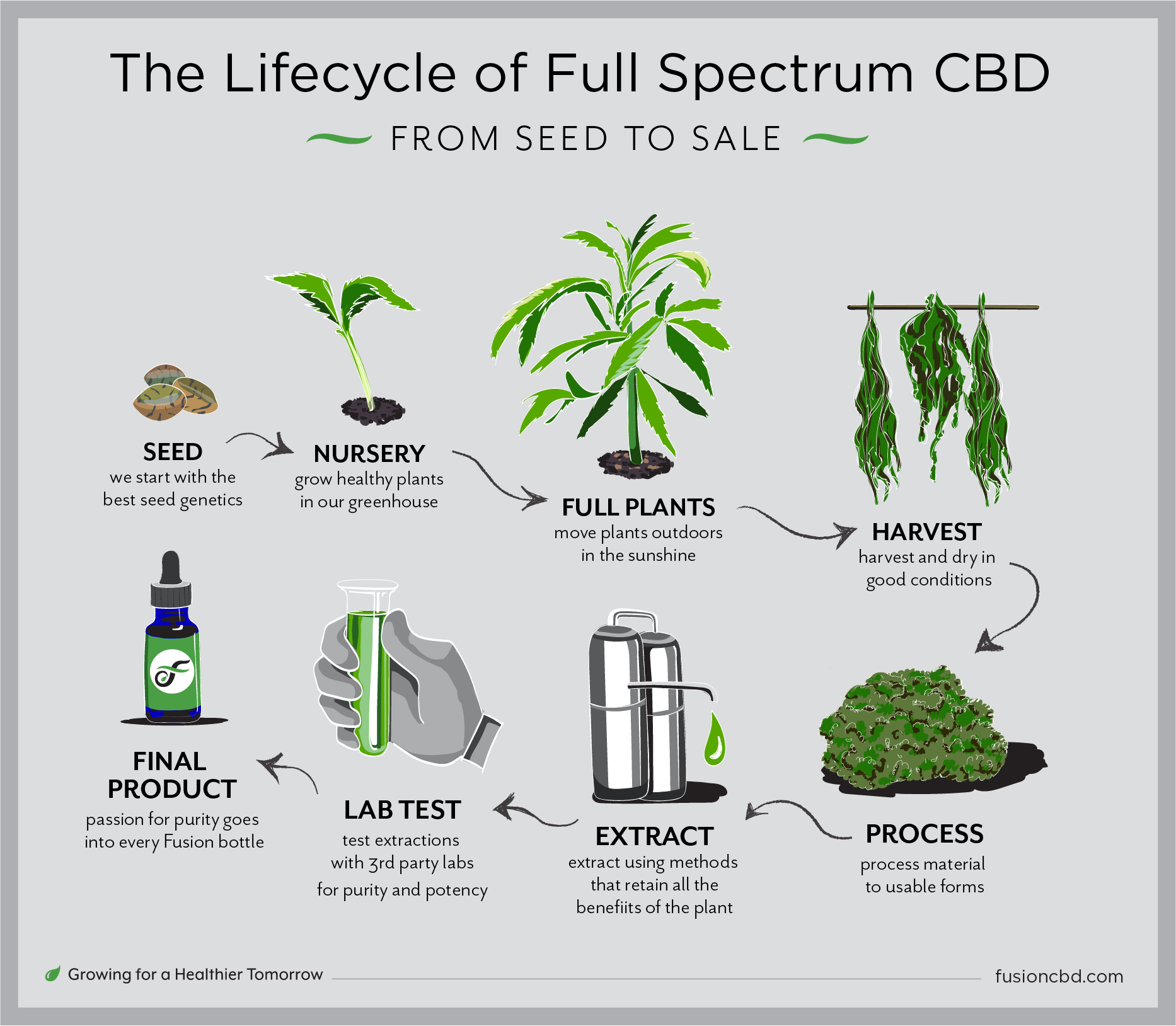lifecycle-production-premium-cbd-oil